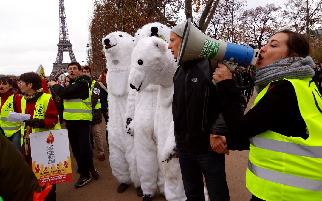 Wrapping up COP 21 research and reporting
